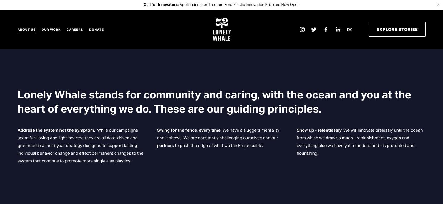 Lonely Whale nonprofit values