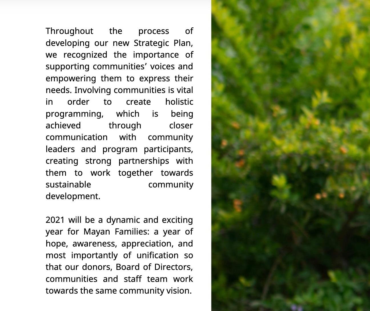 Awkward text spacing in Mayan Families nonprofit impact report